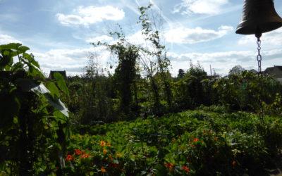 Un jardin foisonnant riche en symboles au doux parfum végétal .